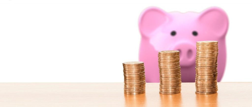 Save Piggy Bank Money Coins